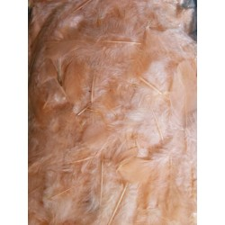 Peříčka, barva lososová, 10 g