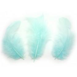 Peří, nebesky modré, 10 g