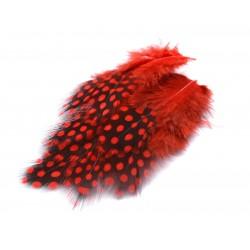 Peří, z perličky, červené, 24 ks