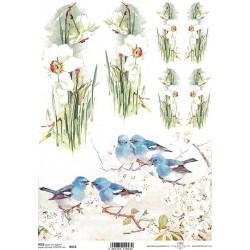 Rýžový papír Narcisky a ptáčci