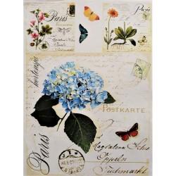 Dekupážní papír  Modrá hortenzie A4
