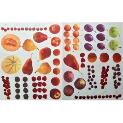 Dekupážní papír Ovoce 33 x 48 cm