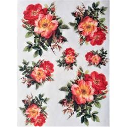 Rýžový papír Čajová růže A4