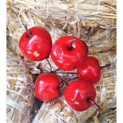 Zápich, Jablíčko, 2,5 cm