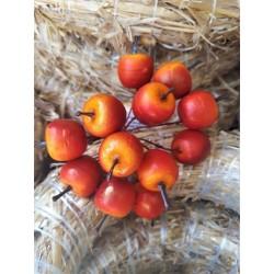Jablíčka ve svazku  průměr 2 cm, 12 ks