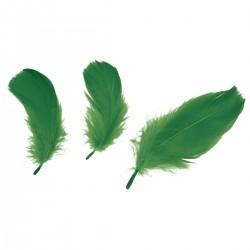 Peříčka jarní zelené 16 g Titanium