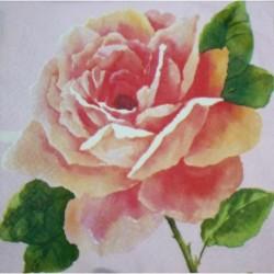 Ubrousek růžový s růží 33x33 cm