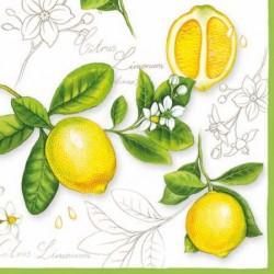 Ubrousek citrony na bílém pozadí 33x33 cm
