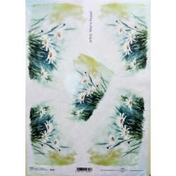 Rýžový papír A4, Kopretiny do rohu
