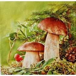 Ubrousek na decoupage houby