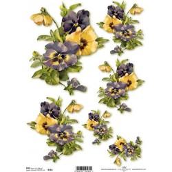 Rýžový papír Macešky žluté a fialové