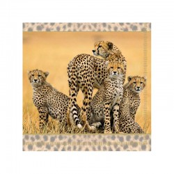 Ubrousek gepard